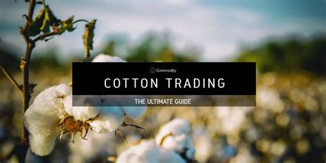 Cotton Trade 2020 - The Trader's Essential Guide To This