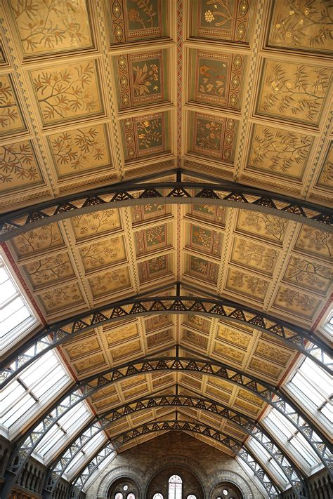 Ceilings of the Natural History Museum, London - Wikipedia
