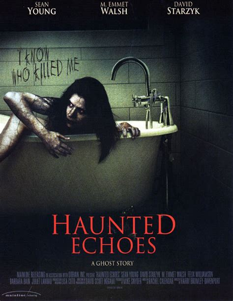 Watch Haunted Echoes (2008) Free Online